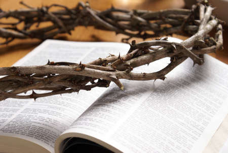 Closeup view of a handmade Crown of Thorns resting on top of an open bible.