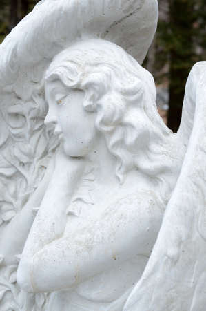 A beautiful closeup of a guardian angel set in stone watching over the land of the garden.
