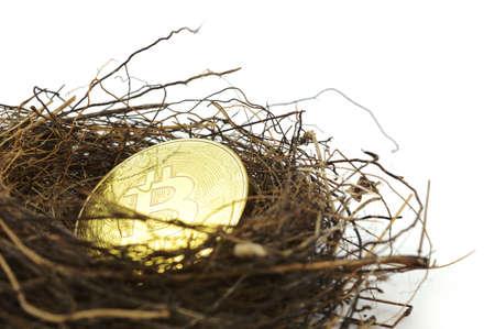 Un concepto basado en inversiones a largo plazo de la criptomoneda Bitcoin utilizando un nido de pájaros y una moneda de oro sobre un fondo blanco.