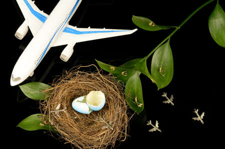 A conceptual image based on the idea learning to fly using airplanes and a bird nest.