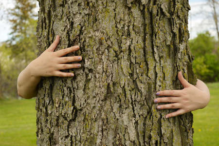 A conceptual image of several peoples arms hugging a large tree for several environmentalists ideas to illustrate. Foto de archivo