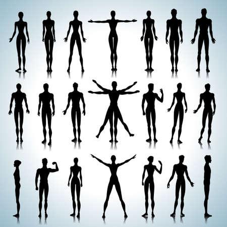 Set van mannelijke en vrouwelijke anatomische silhouetten in verschillende poses Stock Illustratie