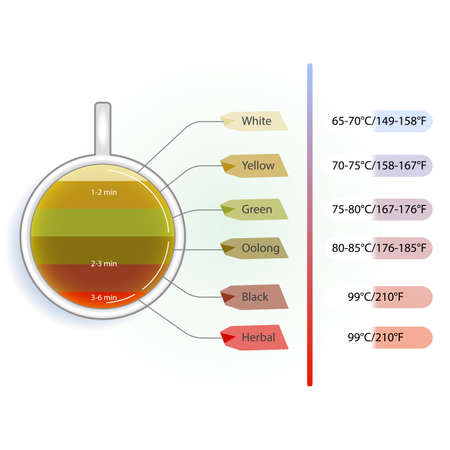 brewing: Time and temperature infographic of brewing tea Illustration