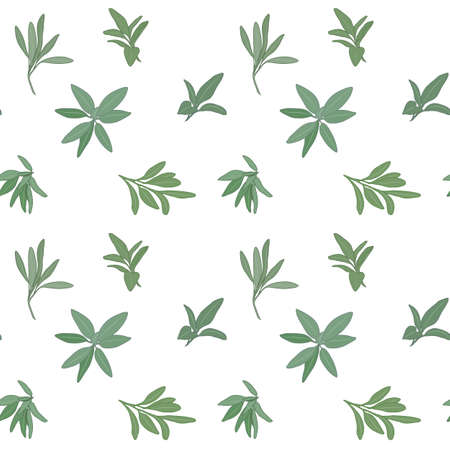 herbs of provence: Sage seamless pattern with sample in swatch panel (AI)
