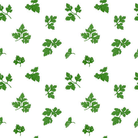 potherb: Parsley seamless pattern with sample in swatch panel (AI)