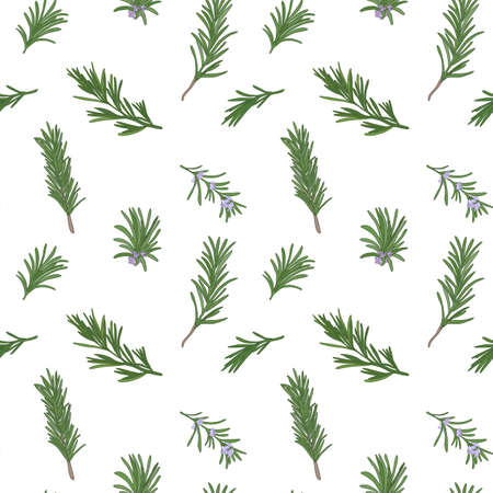 potherb: Rosemary seamless pattern with sample in swatch panel (AI)