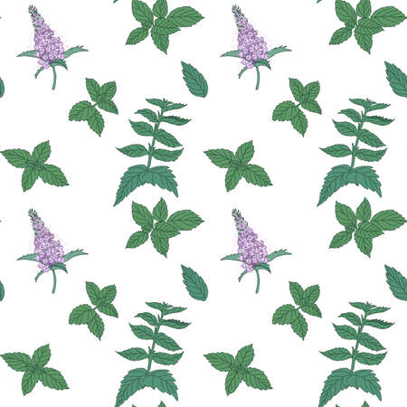 potherb: Mint seamless pattern with sample in swatch panel (AI)