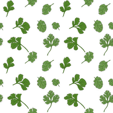 potherb: Cilantro seamless pattern with sample in swatch panel (AI)