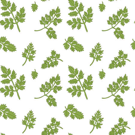 potherb: Chervil seamless pattern with sample in swatch panel AI