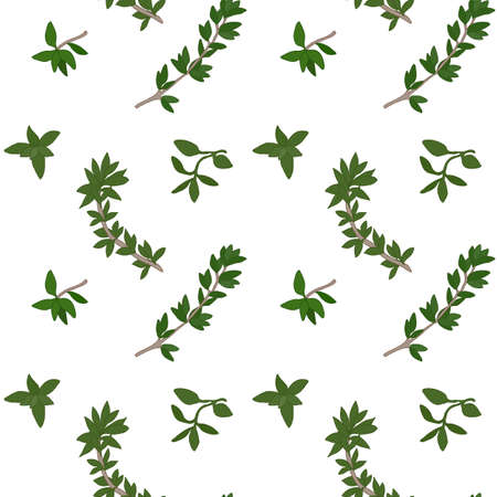 potherb: Thyme seamless pattern with sample in swatch panel (AI)
