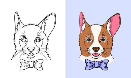pembroke: Sketch and color icon of little corgi dog with a bow