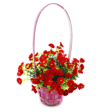 Hanging Basket with Flowers Isolated on White Background photo