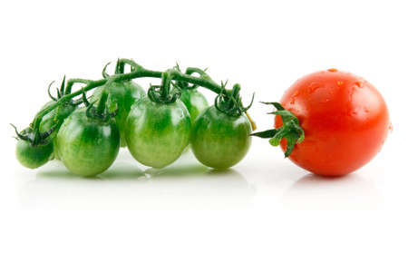 Ripe Wet Red and Green Tomatoes Isolated on White Background   photo