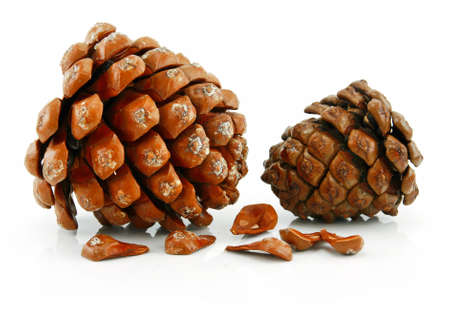 siberian pine: Nuts and Cone of Siberian Pine Isolated on White Background Stock Photo