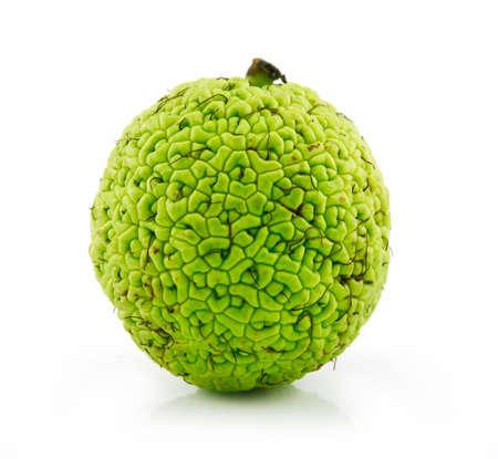 hedgeapple: Osage Orange (Maclura) Isolated on White Background