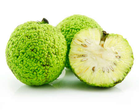 Sliced Osage Oranges (Maclura) Isolated on White Background Stock Photo