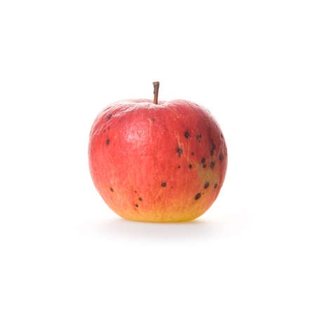 spoilage: Ripe spoilage red apple isolated on white background Stock Photo