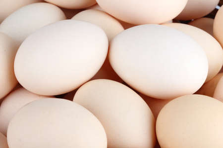 brown eggs: Heap of white chicken eggs (background)