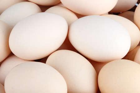 Hoop van witte kippen eieren (achtergrond) Stockfoto