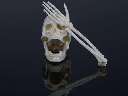 Human skull isolated on black Foto de archivo