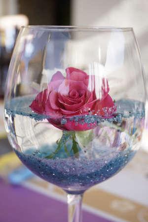a rose in a glass Stok Fotoğraf
