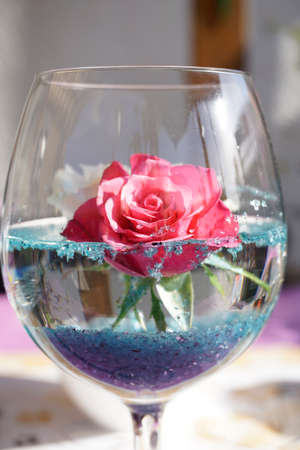 a rose in a glass Stok Fotoğraf