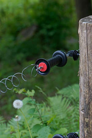 electric fence: Detail of an electric fence