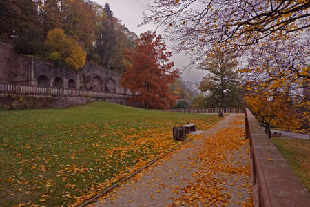 momentariness: autumn in a park Stock Photo