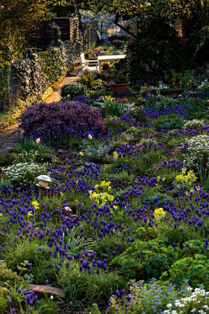 ful: garden ful of flowers in spring