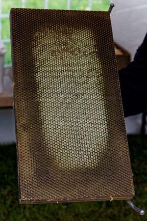 soldered: honeycomb base building