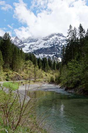 lofty: mountain and tress Stock Photo