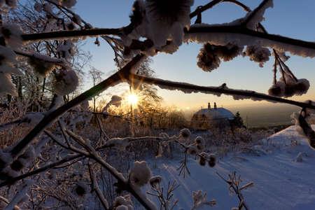 shafts: winter wonderland with bright sunshine Stock Photo