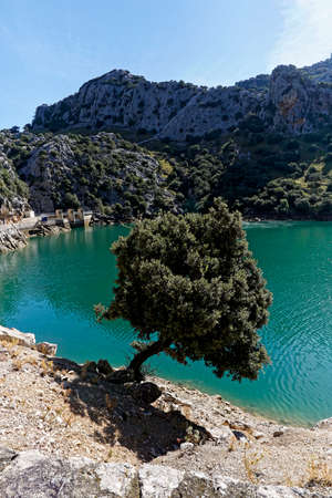 beautiful view from top of the hill on the lake, postcard idyll, Mallorca, Europe Stock Photo