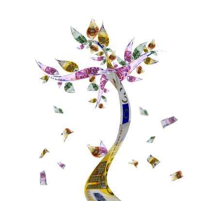 feuille arbre: Arbre de l'argent avec des billets de banque euro