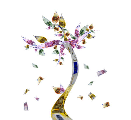 green economy: Money tree with euro bank notes