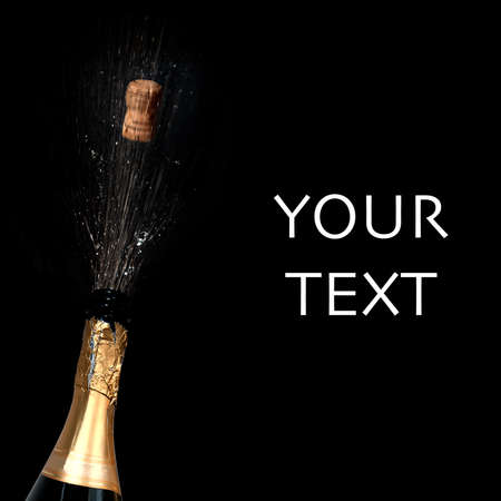 sparkling: Sparkling wine with blank area for your text
