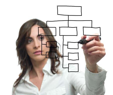 organization chart: Businesswoman draw organization chart