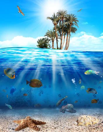 arrecife: Escena bajo el agua con peces y conchas marinas
