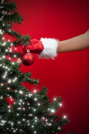 Red ball and Christmas tree Stock Photo - 11540039