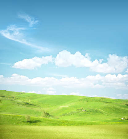 afield: beautiful green landscape on a sky background