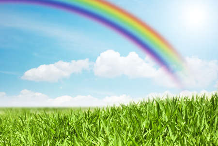afield: view of a green field on a rainbow background