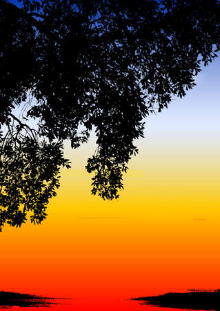 kenya: spectacular colored ethnic sunset with tree