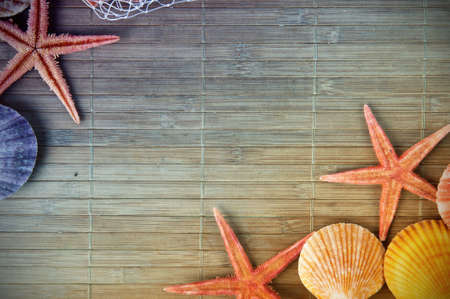 seashells: Shell and starfish frame with space for your text