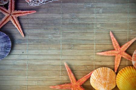 estrella de la vida: Shell y el marco de estrella de mar con espacio para el texto