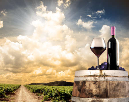 bodegas: Naturaleza muerta de vinos con barrica y viñedo