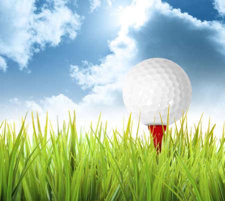 play golf: Golf ball in a green field
