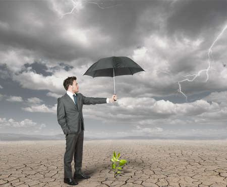 Businessman protect with umbrella a plant to help the agriculture Stock Photo - 14035415