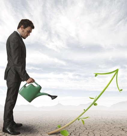 arroser plantes: Concept de la croissance d'une entreprise