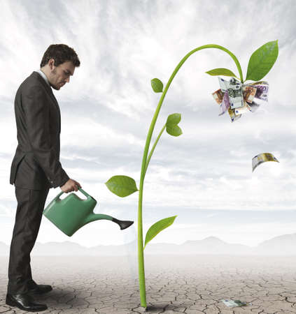 economia: Empresario regando una planta que produce dinero Foto de archivo