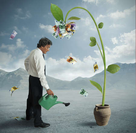 earn money: Businessman and a plant of money